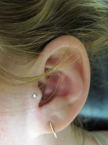 Tragus Piercings Ultimate Guide With Images